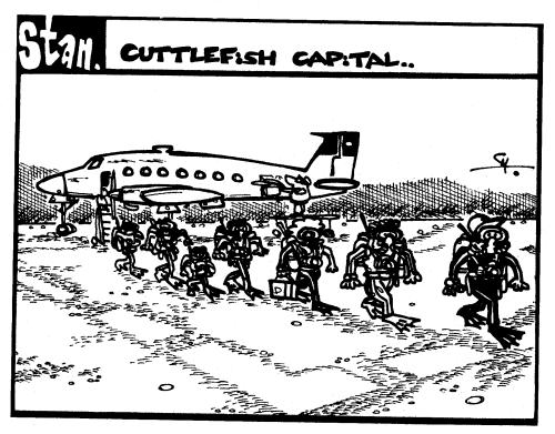 Cuttlefish capital