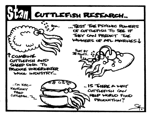 Cuttlefish research