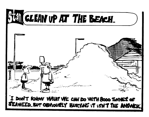 Clean up at the beach