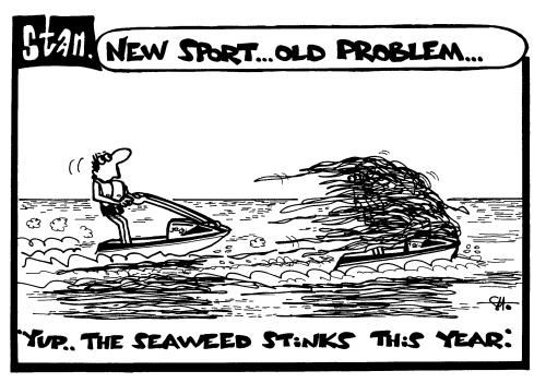New sport ... old problem