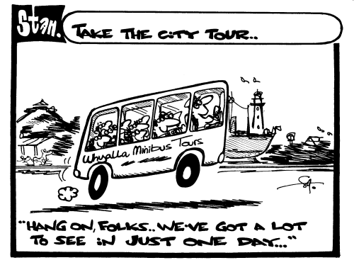 Take the city tour